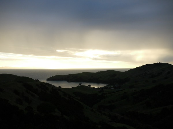 coromandel view 2