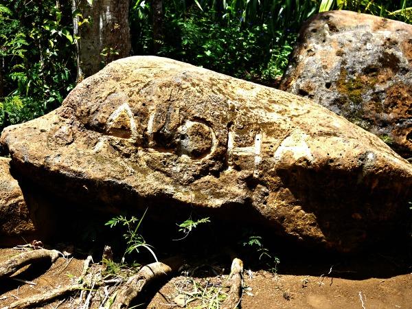 aloha rock